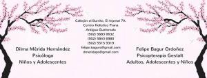 Psicología Gestalt Antigua Guatemala